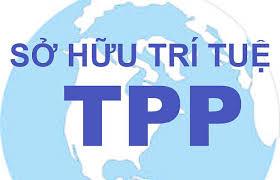 Quyền sở hữu trí tuệ trong TPP